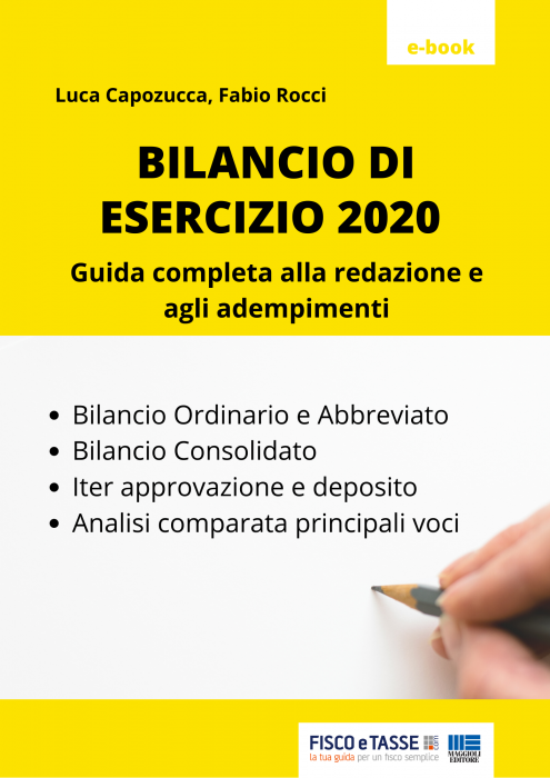 Bilancio di esercizio 2020 (eBook)