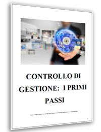 Controllo di gestione: i primi passi (pdf)
