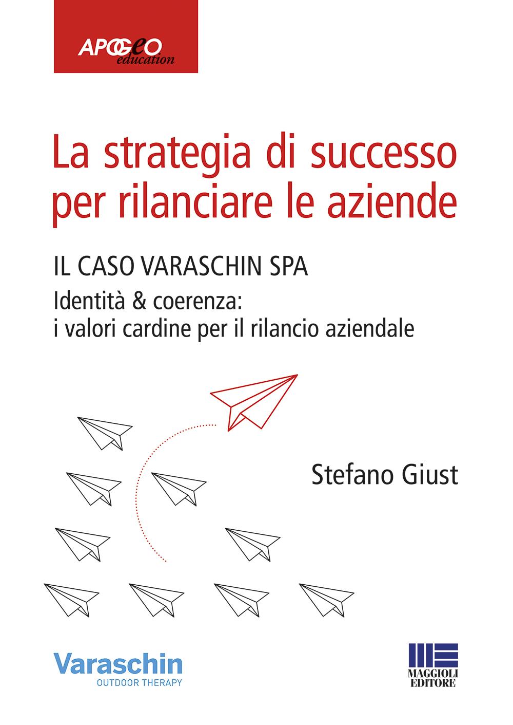 Strategia di successo per rilanciare le aziende-Libro