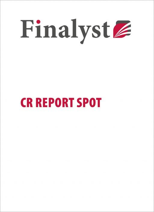 Finalyst Centrale Rischi report spot