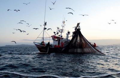 Cooperative pesca: istruzioni INPS sull'inquadramento previdenziale