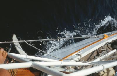 La tutela dei disabili nel nuovo Codice della Nautica da diporto