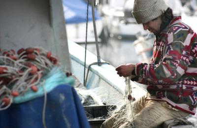 Indennità fermo pesca 2020 ecco gli importi autorizzati