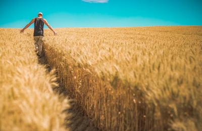 Agricoltura:  versamenti volontari 2021