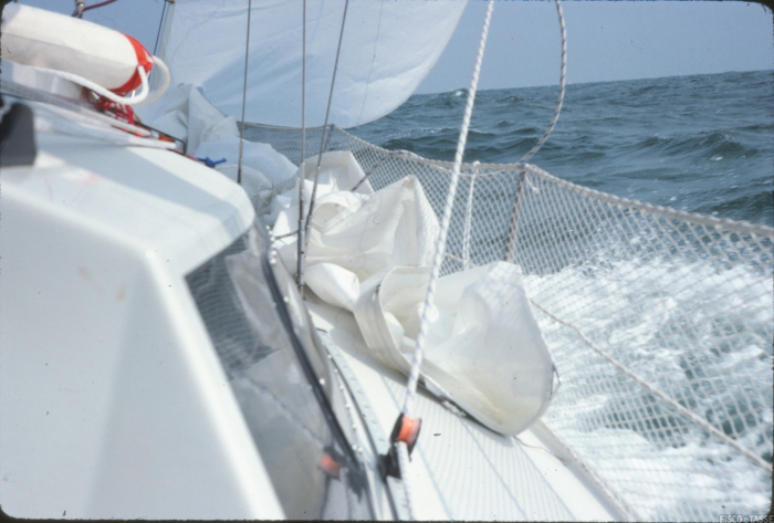 Scuole nautiche: il Codice della Nautica riscrive e precisa le regole per l'attività