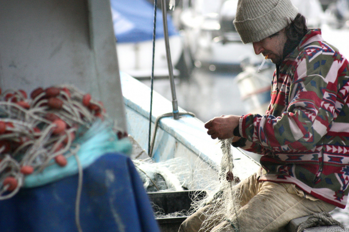 Fondo COVID per la pesca: ecco il decreto MIPAAF