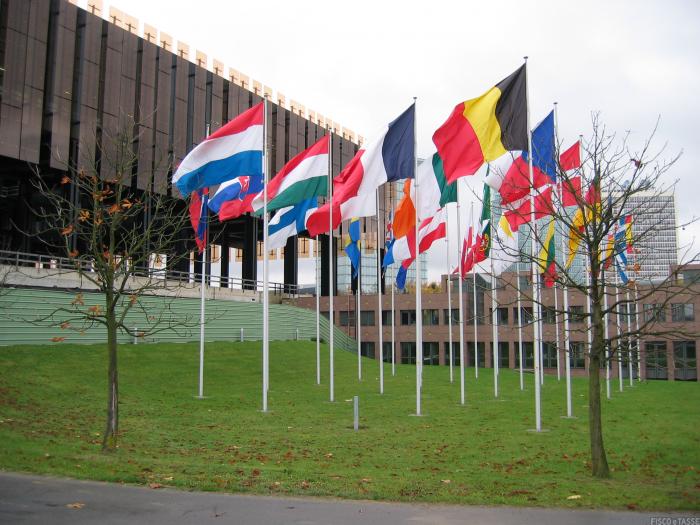 La Corte Europea vieta la condivisione automatica di contenuti protetti da Copyright