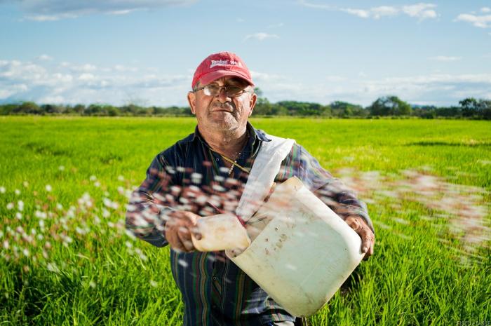 Piccola proprietà contadina: l'aliquota al 9% se si trasferisce il terreno prima di 5 anni