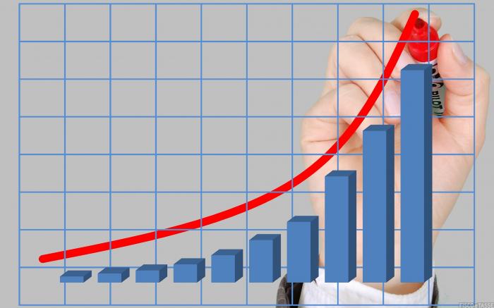 Analisi della redditività per prevenire la crisi dell'impresa