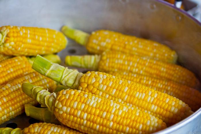 Corretta applicazione IVA sulla cessione del trinciato di mais