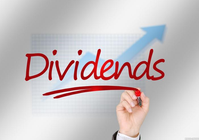 delibera distribuzione dividendi