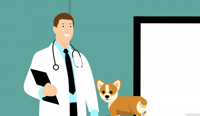 Incarichi COVID ai medici in pensione:le istruzioni INPS