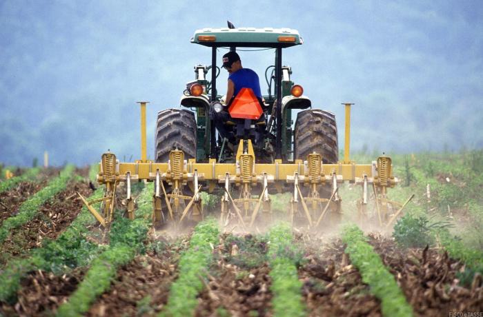 Agricoltura e pesca: a chi spetta l'esonero contributivo per COVID