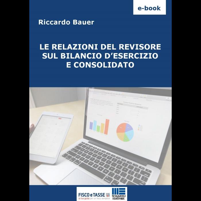 Le relazioni del revisore sul Bilancio d'esercizio